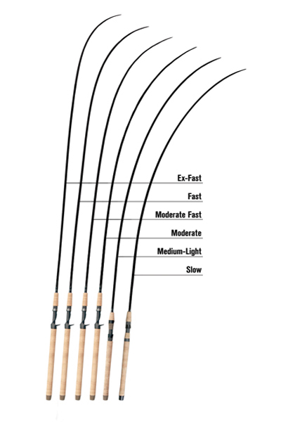 trout fishing rod action chart